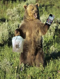 Alaska-Apple-Store.jpg