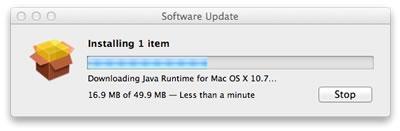 Java.022611.jpg