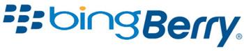 bingberry logo.jpg
