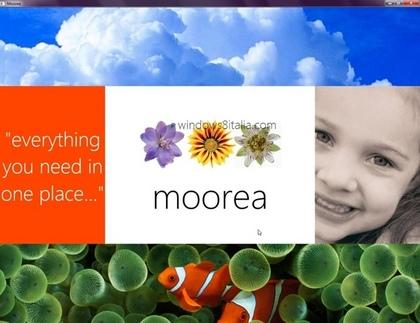 moore1.jpg
