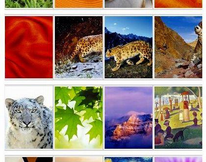 snow leopard desktop picture ss1.jpg