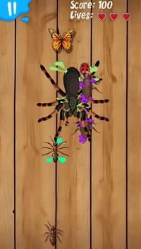 zune-hd-splatter-bug.jpg